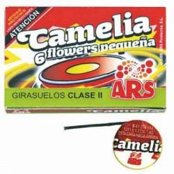 Camelia  Flower Pequeña