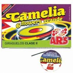 Camelia Flower Grande